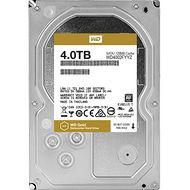 WD WD4002FYYZ 4 TB Gold 7200 RPM 128 MB SATA Hard drive