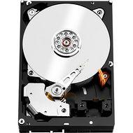 """WD WD101KFBX Red Pro 10 TB 3.5"""" SATA 256 MB 7200 RPM Hard Drive"""