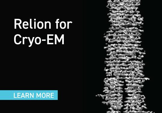 Relion For Cryo-EM